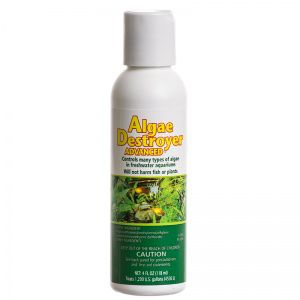 API Aquarium Algae Destroyer 8 oz