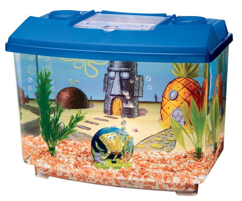 bikini aquarium driverlayer search engine. Black Bedroom Furniture Sets. Home Design Ideas