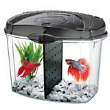 AQUEON 1/2 Gallon Betta Bowl Starter KitW/Divider