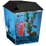 TOM Aquarius Diamond Aquarium Kit