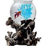 TOM Betta Treasure Aquarium Kit