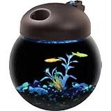 TOM GloBowl Aquarium Kit