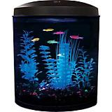 TOM GloFish Flatback Aquarium Kit