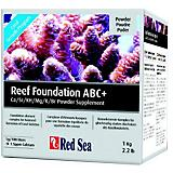 Red Sea Reef Foundation  ABC