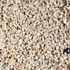 Carib Sea Aragonite Reef Sand Substrate