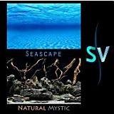 Seaview Seascape Natural Mystic Background