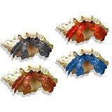 Blue Ribbon Hermit Crab Assortment Ornaments