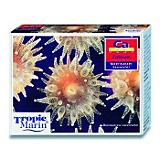 Tropic Marin Saltwater Calcium Test Kit