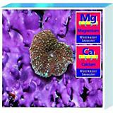 Tropic Marin Saltwater Calcium/Magnesium Test Kit