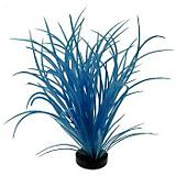 Blue Ribbon Neon Ocean Grass Plant