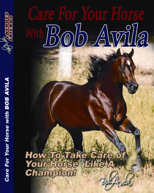 Bob Avila Care For Your Horse DVD
