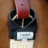 Cashel Ring Master Neoprene