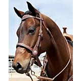 Weaver Pretty In Pink Crystal Browband Headstall