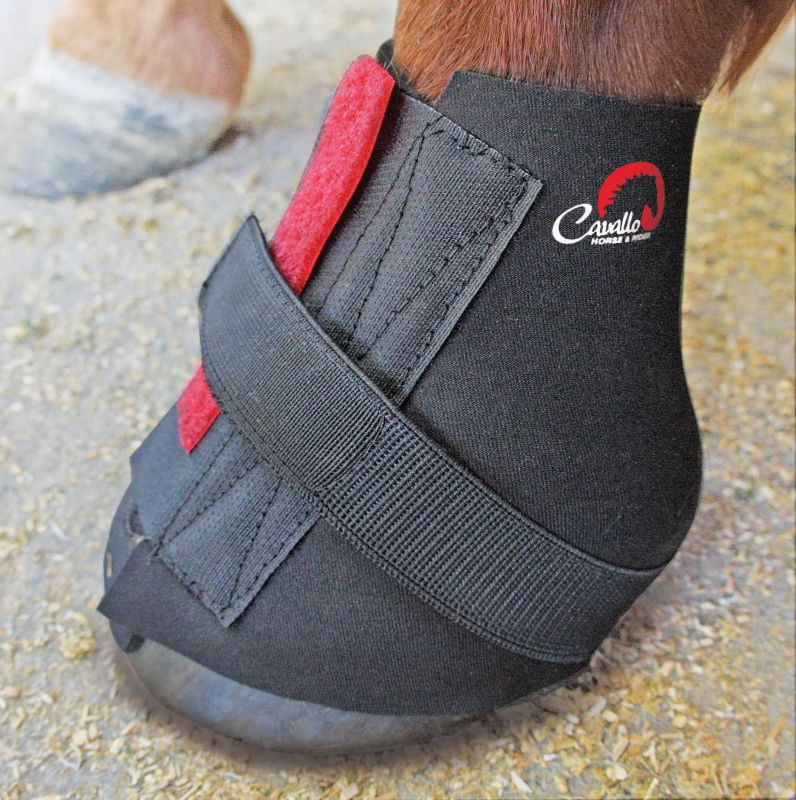 Cavallo Sport Boot Pastern Wraps 2-Pack Medium Best Price