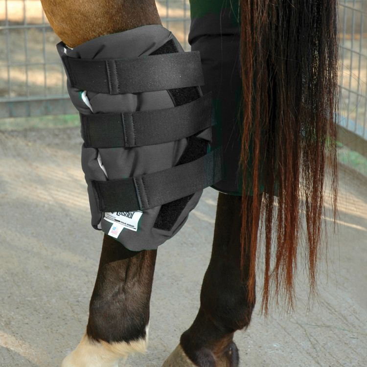 Cashel Boomers Hock Sock Horse Black Best Price