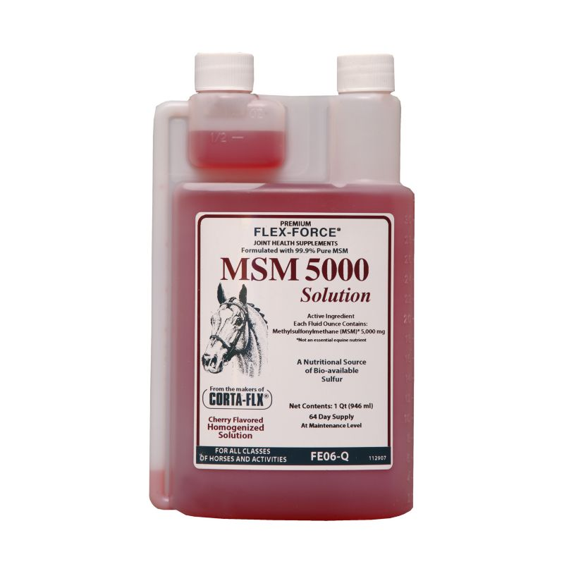 Flex-Force MSM 5000 Solution 128 oz Best Price