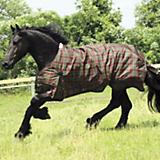 Saxon 600D Turnout Blanket 100g