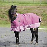 WeatherBeeta 600D Pony Turnout Blanket-100g