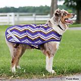 Horseware Amigo Mio 600 Denier Dog Blanket