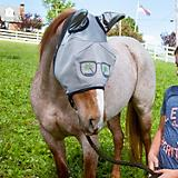 Defender Funny Face Fly Mask w/Ears