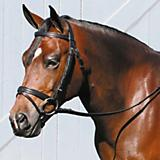 Tory Leather Deluxe Dressage Bridle