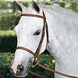 Pessoa Fancy Raised Bridle w/Laced Reins