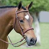Pessoa Fancy Wide Padded Show Bridle