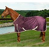 Defender 1680D High Neck Turnout Blanket 200g