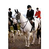 Shires Ladies Clinton Frock-Style Hunt Coat