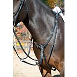 Shires 3 Point Breastplate