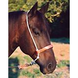 Martin Harness Leather Noseband
