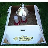 Backyard Brooders Box