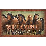 Welcome Friends Door Mat