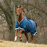 Horseware Rambo Original Leg Arch Blanket 100g