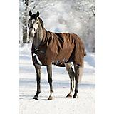 Horseware Rambo Wug Turnout Blanket 370g