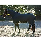 Horseware Rambo Grand Prix Dustbuster Sheet 60