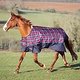 Shires Highlander 600D Blanket 100g