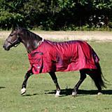 Shires Stormcheeta 2000D T/O Blanket 200g