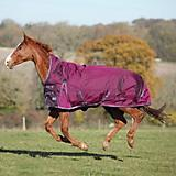Shires 1680D Typhoon High Neck Turnout
