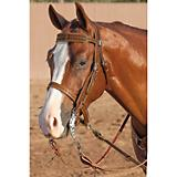 Weaver Barbed Wire Wide Browband Headstall