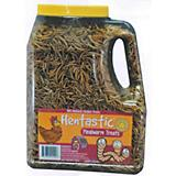 Hentastic Mealworm Treats