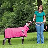 ProCool Mesh Sheep Blanket w Crystals