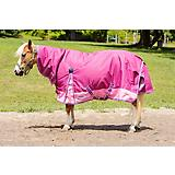 WB 1200D Combo Pony Turnout Sheet