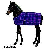 Centaur 600D Foal Turnout Blanket