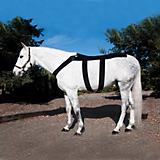 Ice Horse Equine Back Blanket