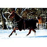 Horseware Rambo Optimo Turnout Sheet