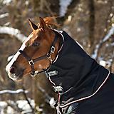 Horseware Rambo Optimo Hood 0g