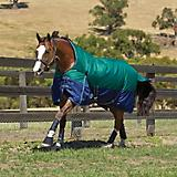 Weatherbeeta Original 1200D High Neck Sheet