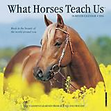 What Horses Teach Us 2016 Mini Calendar