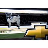 Grillie Pug Car and Truck Grille Ornament